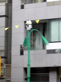 笹塚のパンダ