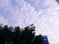 sky050730