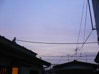 sky050803