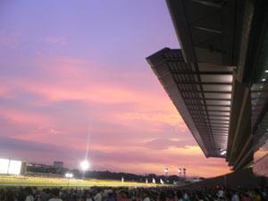 雨上がりの競馬場